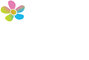 The Chiropractic Wellness Studio